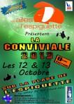 Affiche conviviale des Ailes de l'Espiguette 2013
